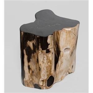Предметы декора из окаменелого дерева