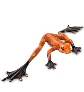 Анималистические лягушки PAVONE