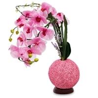 Орхидея с LED-подсветкой LP-13