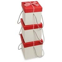 Набор из 3-х подарочных коробок WG-32