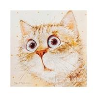 Открытка «Любимый котик» ANG-668