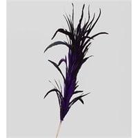 14-049 Декоративный веничек из перьев (о. Бали)