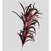 14-052 Декоративный веничек из перьев (о. Бали)