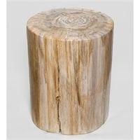 Камень древесный «Победивший стихии» TB629
