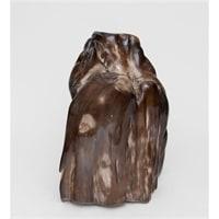 Камень древесный «Эпоха динозавров» TB636