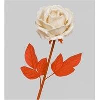 Роза TR-419L
