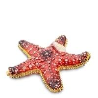 Шкатулка «Морская звезда» SMT-06 (Nobility)