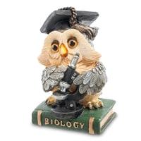 Фигура Сова «Биолог» OL-9574-XB (Sealmark)