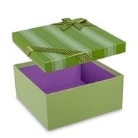 Подарочная коробка «Яркая тесьма» ZK-04/2